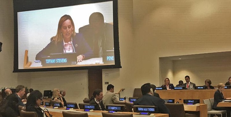 CIBJO Ethics Commission President Elucidates On Small Islands Opportunities At United Nations
